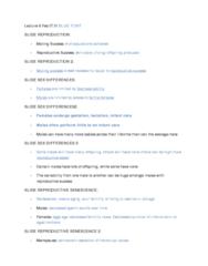 lecture-6-blue-font