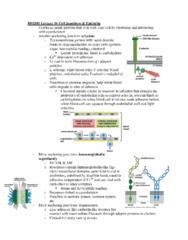 bio241-lecture-16