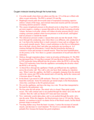 BPK 205 Study Guide - Final Guide: External Intercostal Muscles, Alveolar Pressure, Intrapleural Pressure