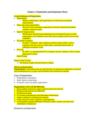 CH.1 - Organizations & Organization Theory