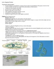 BIOL 2030 Study Guide - Final Guide: Gastrovascular Cavity, Shear Zone, Bivalvia