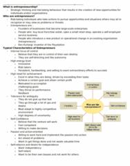 Chapter #5 - Entrepreneurship.doc