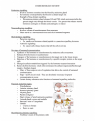 endocrinology-review-doc