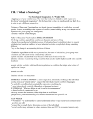 soc-final-study-notes-docx