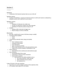 BIOL 2020 Lecture Notes - Citric Acid, Beta Sheet, Molecular Motor