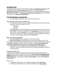 PSYC 3450 Lecture Notes - Lateral Geniculate Nucleus, Magnocellular Cell, Optic Tract