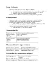 55-100 Lecture Notes - Deoxyribose, Hexose, Chloroplast