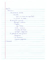 scan0002-pdf
