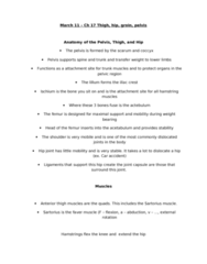 PEDS240 Lecture Notes - Tensor Fasciae Latae Muscle, Adductor Magnus Muscle, Adductor Longus Muscle