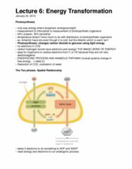biology-1002-energy-transformation-pdf