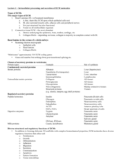 midterm-1-pdf