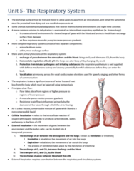BIOL 273 - Unit 5- Respiratory System