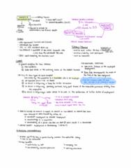 Week 3.pdf