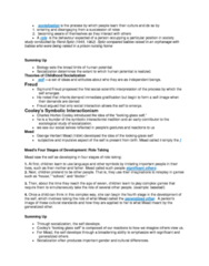 SOCA01H3 Chapter Notes - Chapter 4: Erving Goffman, Virtual Community, Thomas Theorem