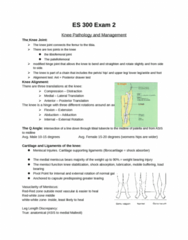 ES 300 Study Guide - Midterm Guide: Medial Collateral Ligament, Anterior Cruciate Ligament, Hip Fracture