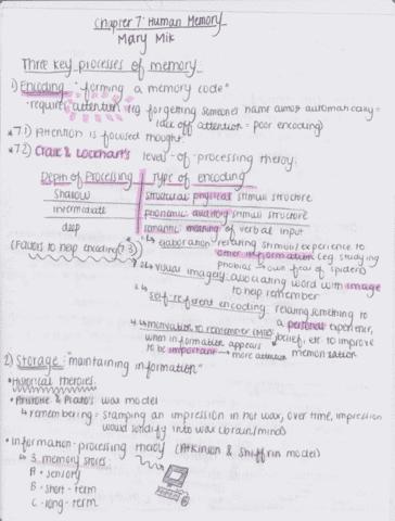 psy-205-textbook-ch-7-human-memory