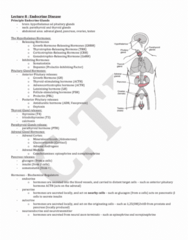 LMP299Y1 Study Guide - Midterm Guide: Acth Stimulation Test, Pituitary Adenoma, Anterior Pituitary