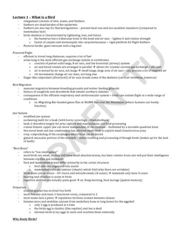 lecture-1-pdf
