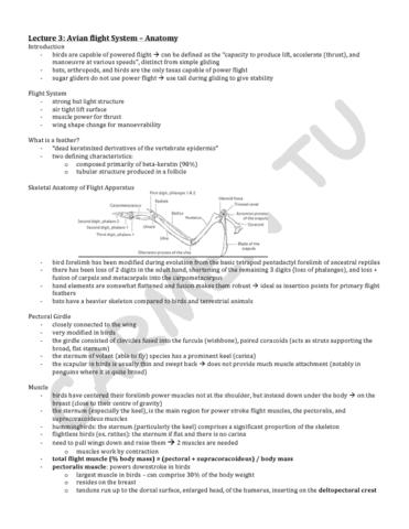 lecture-3-pdf