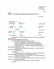 CHEM 143A Study Guide - Midterm Guide: Enol, Nucleophile, Gluconeogenesis