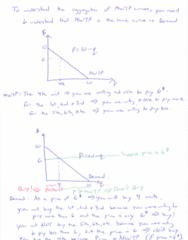 ECN 511 Quiz: Ch 3 AggregatingMWTP&MC