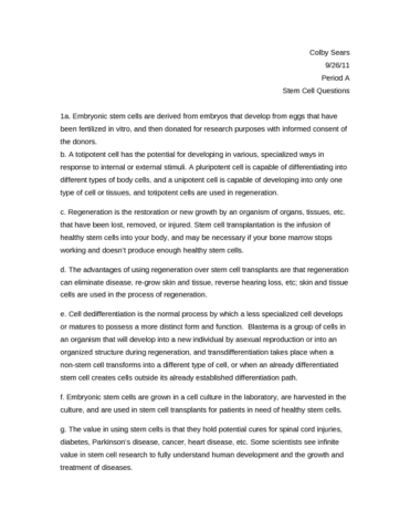 sample essay about my school reading