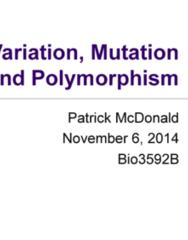 Biology 3592A Study Guide - Mutation, Nonsense Mutation, Base Pair