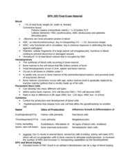 BPK 205 Study Guide - Final Guide: Trachea, Elastin, Glut2
