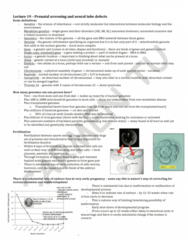 LMP299Y1 Lecture Notes - Lecture 19: Neural Tube Defect, Spina Bifida, Neural Tube
