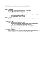 SOCY 100 Lecture Notes - Lecture 1: Macrosociology, Microsociology