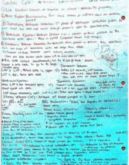 KNES260 Midterm: Cardiac Cycle