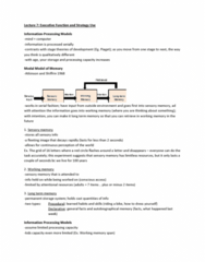 PSYC 3P60 Lecture Notes - Lecture 7: Synaptic Pruning, Long-Term Memory, Autobiographical Memory