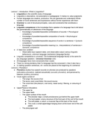 LIN100Y1 Study Guide - Final Guide: Voiced Alveolar Fricative, Auxiliary Verb, Nasal Consonant