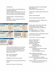 APA 2312 Lecture Notes - Lecture 11: Afterload, Insulin, Aorta