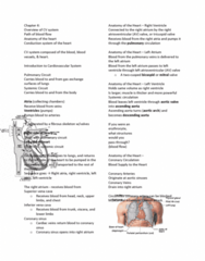 APA 2312 Lecture Notes - Lecture 10: Resting Potential, Electrocardiography, Purkinje Fibers