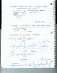 BIOC 4701 Lecture Notes - Lecture 21: Phosphonate