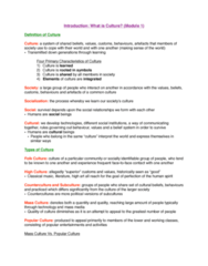 SOC 202 Study Guide - Midterm Guide: Social Inequality, Mass Media, Subculture
