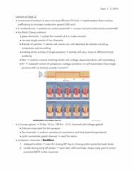 BIOL 3050 Chapter Notes - Chapter 4: Patch Clamp, Tandem Pore Domain Potassium Channel, Nernst Equation
