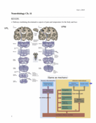 BIOL 3050 Chapter 11-12: biol ch. 11&12:lecture