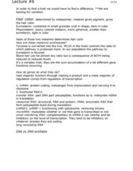 BIOL 3010 Lecture Notes - Lecture 6: Transfer Rna, Uracil, Long Non-Coding Rna
