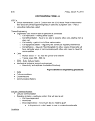 SCIE 1P51 Lecture Notes - Lecture 15: Shinya Yamanaka, Calcium Phosphate, Chondrocyte
