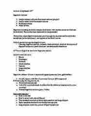 NUTR 3210 Lecture Notes - Lecture 4: Lingual Lipase, Pylorus, Alpha-Amylase