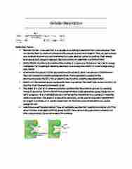 BIOL 1000 Study Guide - Midterm Guide: Oxidative Phosphorylation, Intermembrane Space, Atp Synthase