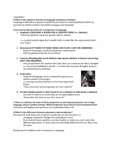 Study Guides For Shelley Cross Mellor Oneclass