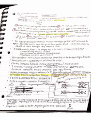 BIOL 21 Lecture Notes - Lecture 24: Nci-60, Maurice Ravel, Myocyte