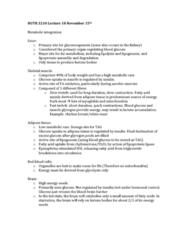NUTR 3210 Lecture Notes - Lecture 18: Lipoprotein Lipase, Adipose Tissue, Lipogenesis