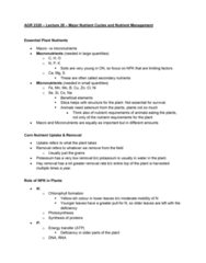 AGR 2320 Lecture Notes - Lecture 28: Nobel Peace Prize, World War I, Nitrogen Cycle