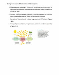 Chapter all: Energy Conversion- Mitochondria and Chloroplasts