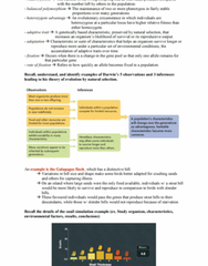 Biology 1201A Study Guide - Final Guide: Selection Coefficient, Genetic Drift, Stout