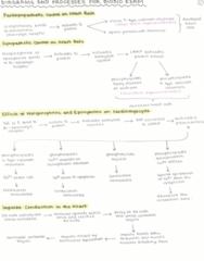 BIO310H5 Study Guide - Final Guide: Cardiac Output, Nci-60, Cardiac Cycle